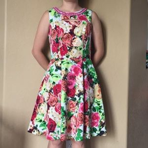 Beautiful Sandra Darren roses floral dress